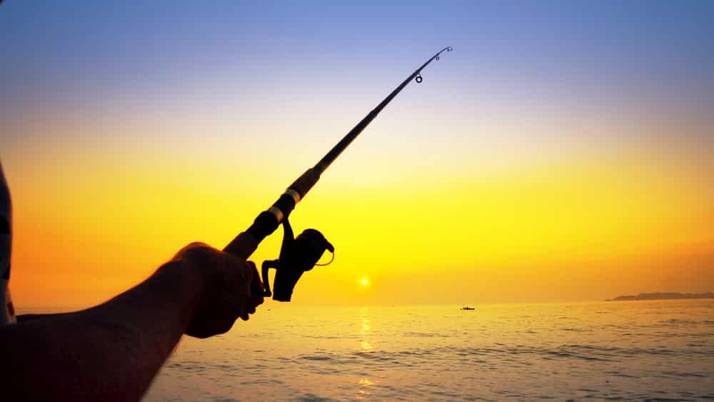 Best Times to Fish Around Galveston County, Texas