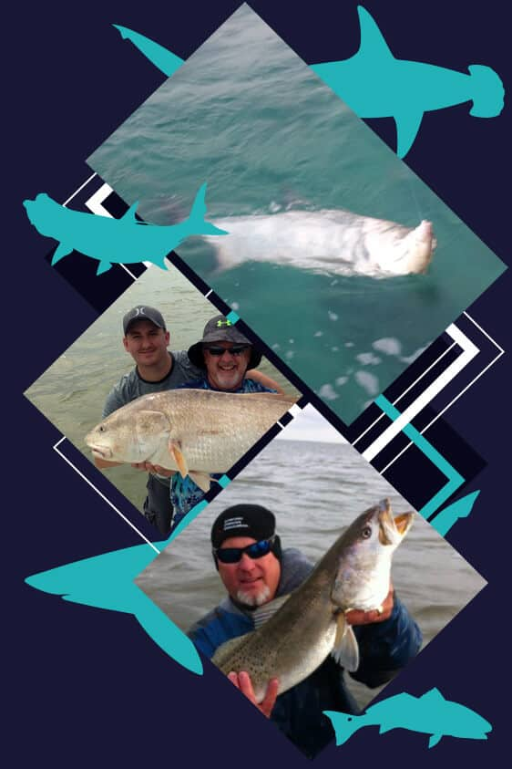 Speckled Trout and Redfish trips, Full Day Trips, Shark Trips